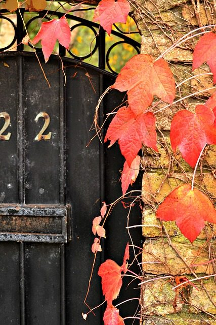 Your Home Autumn To Do List